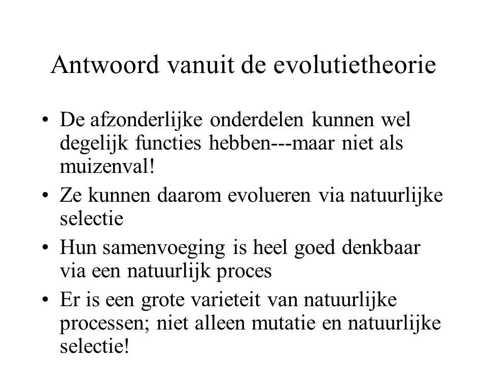 Antwoord vanuit de evolutietheorie