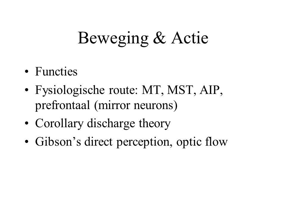 Beweging & Actie Functies