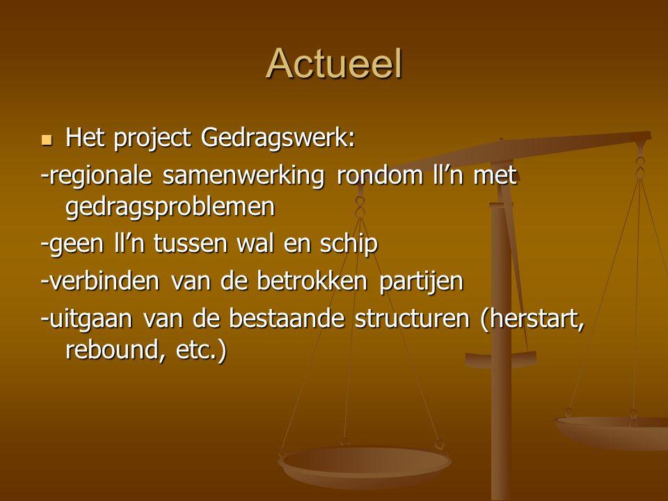 Actueel Het project Gedragswerk: