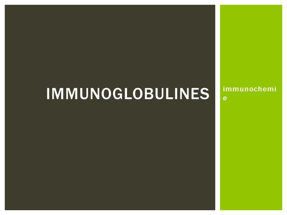 Immunoglobulines immunochemie