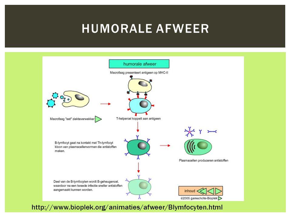 Humorale afweer http://www.bioplek.org/animaties/afweer/Blymfocyten.html