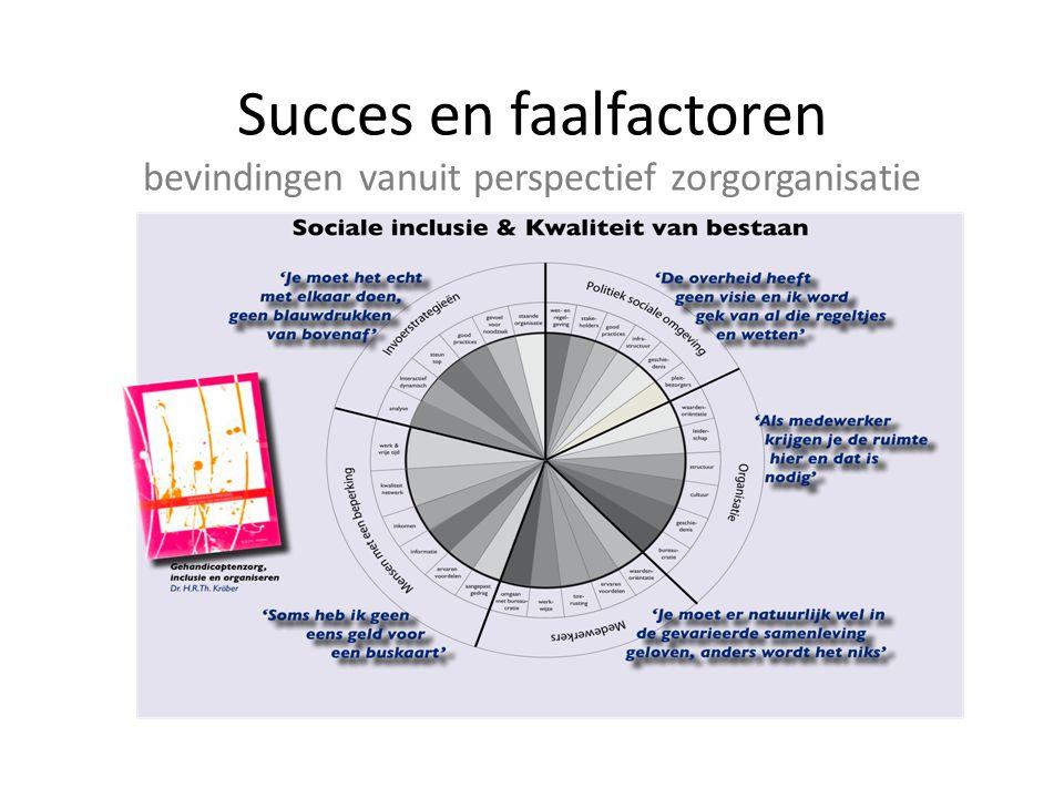 Succes en faalfactoren bevindingen vanuit perspectief zorgorganisatie