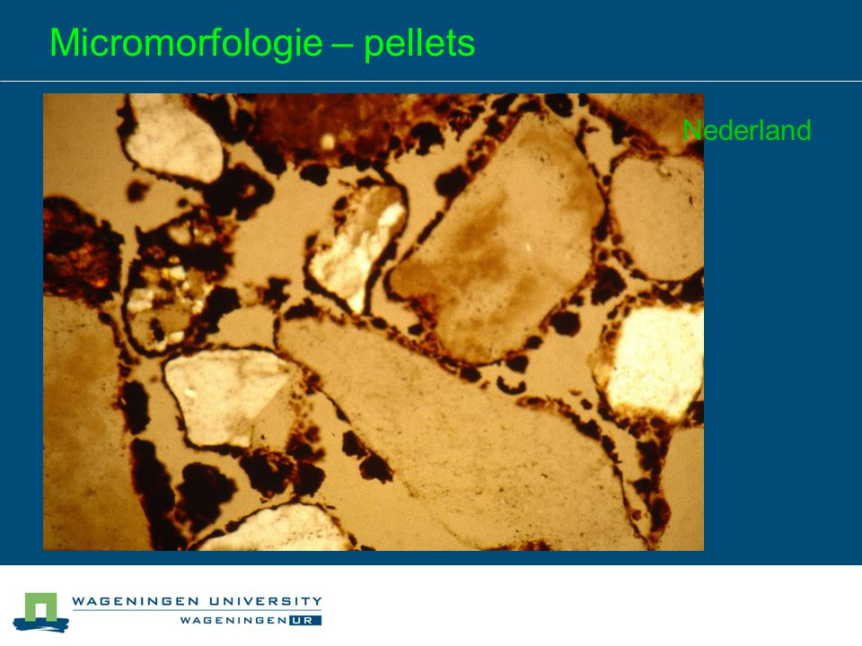 Micromorfologie – pellets