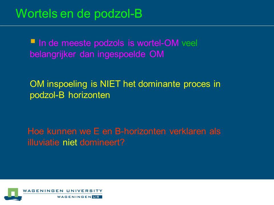 Wortels en de podzol-B In de meeste podzols is wortel-OM veel belangrijker dan ingespoelde OM.