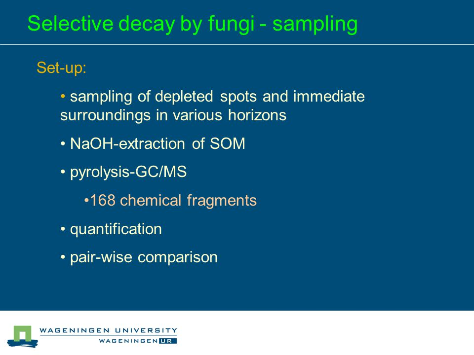 Selective decay by fungi - sampling