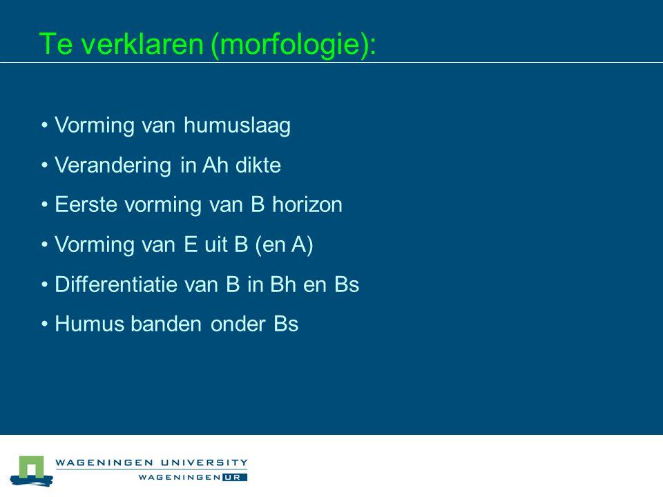 Te verklaren (morfologie):