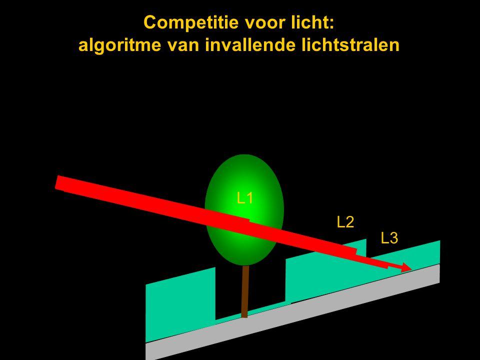 Competitie voor licht: algoritme van invallende lichtstralen