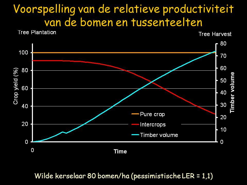 Wilde kerselaar 80 bomen/ha (pessimistische LER = 1,1)