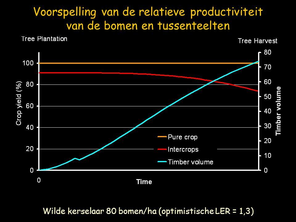 Wilde kerselaar 80 bomen/ha (optimistische LER = 1,3)