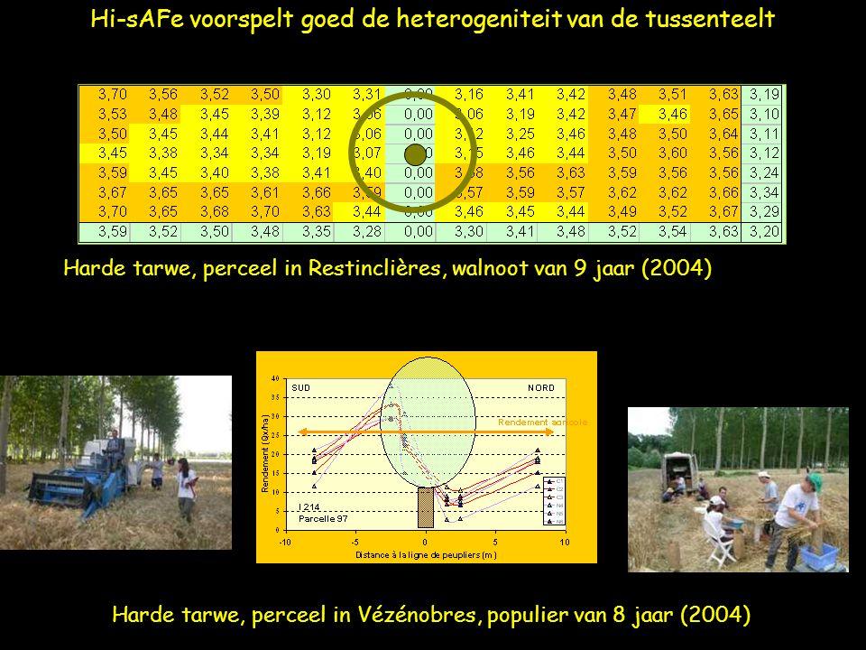 Hi-sAFe voorspelt goed de heterogeniteit van de tussenteelt