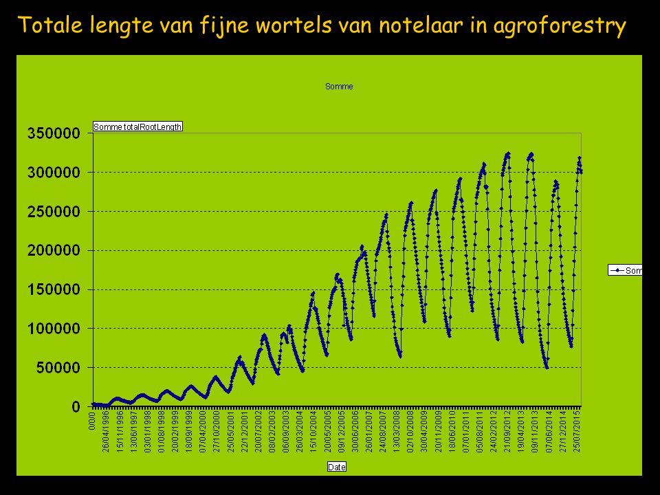 Totale lengte van fijne wortels van notelaar in agroforestry