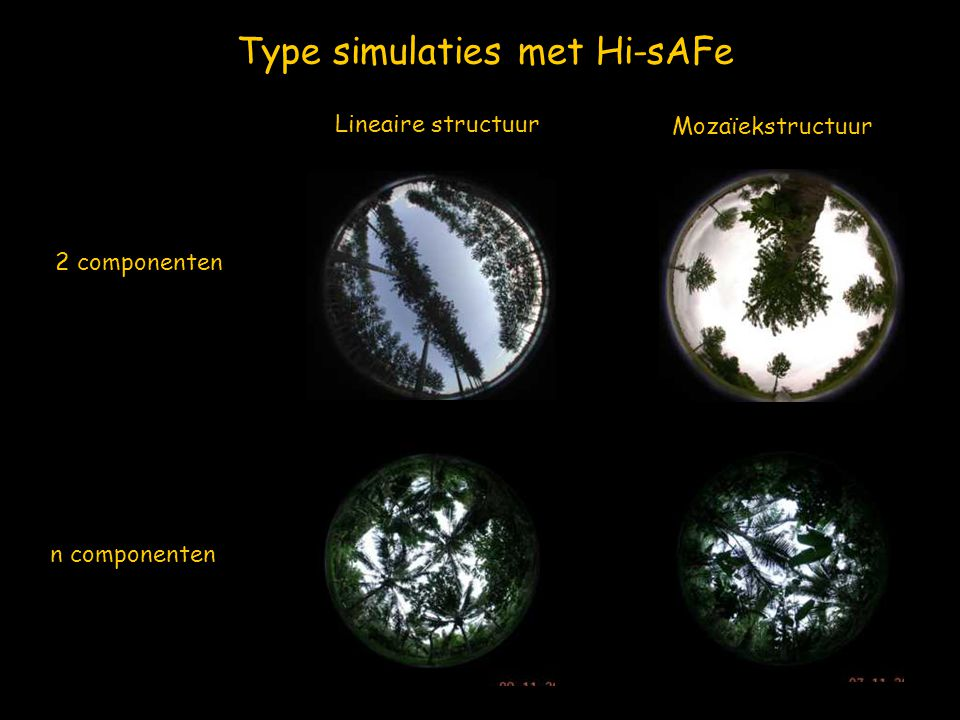 Type simulaties met Hi-sAFe