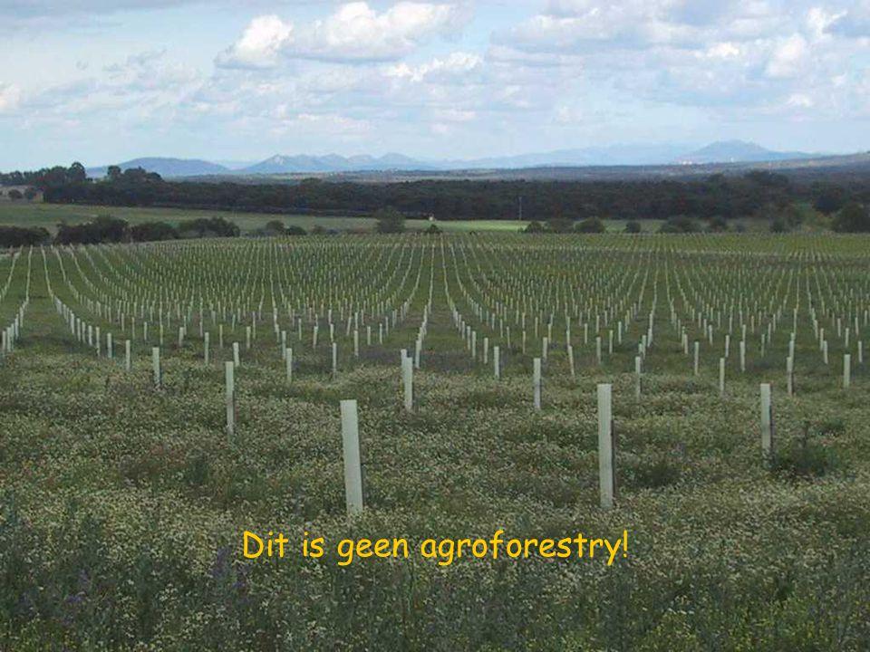 L'AGROFORESTERIE N'EST PAS UN BOISEMENT DES TERRES AGRICOLES
