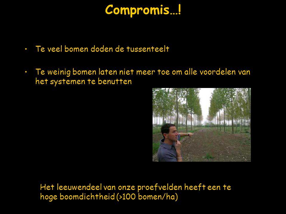 Compromis…! Te veel bomen doden de tussenteelt