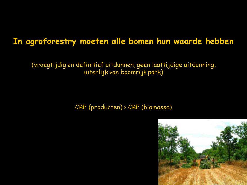 In agroforestry moeten alle bomen hun waarde hebben