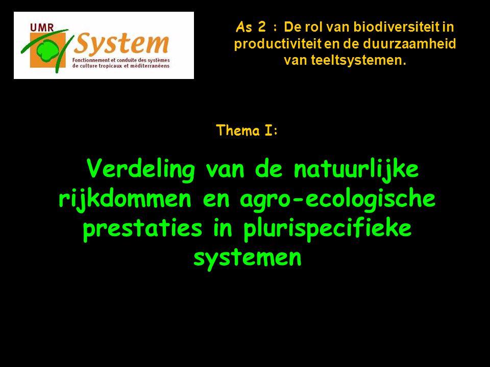 Commission d évaluation - 30 janvier 2006