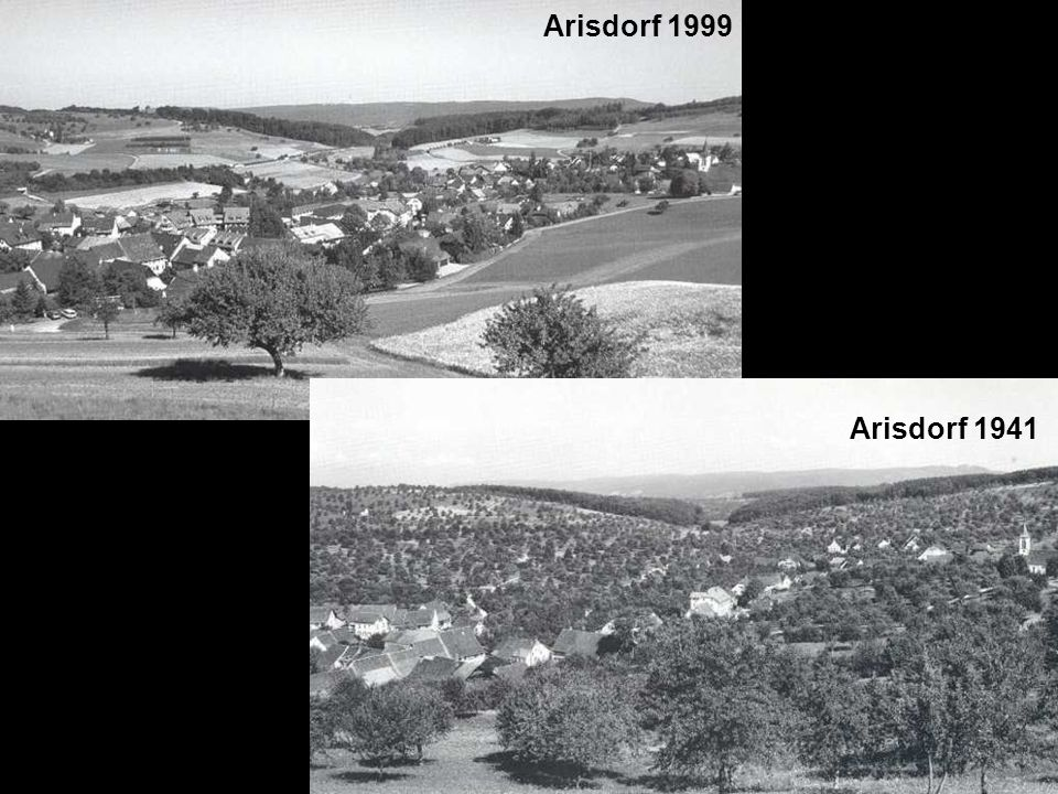 Arisdorf 1999 Arisdorf 1941 (Tanner, 1993)