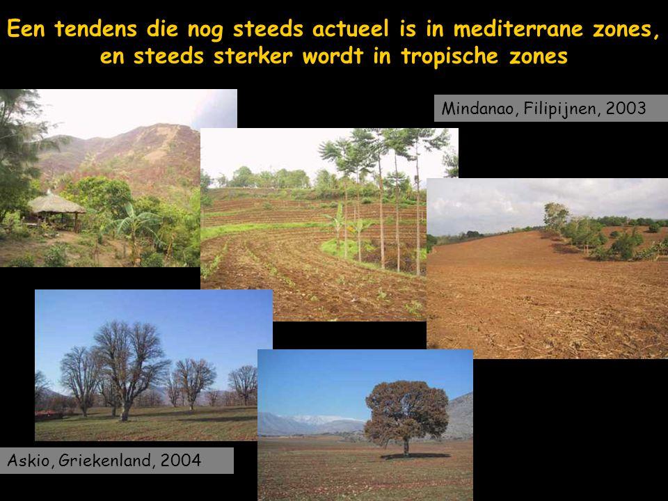 Een tendens die nog steeds actueel is in mediterrane zones, en steeds sterker wordt in tropische zones