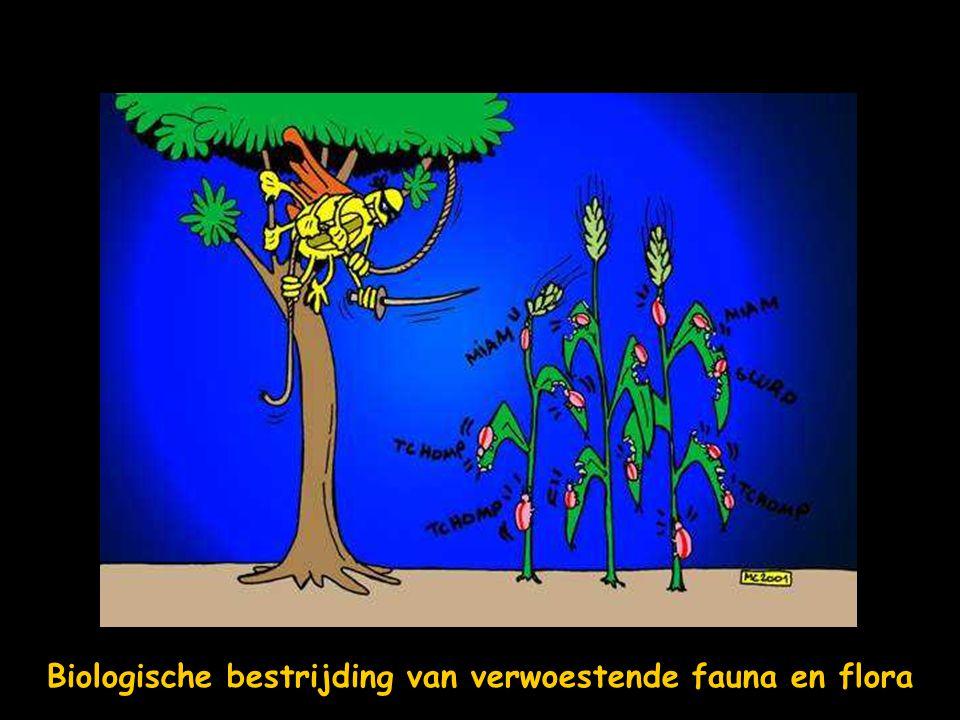 Biologische bestrijding van verwoestende fauna en flora