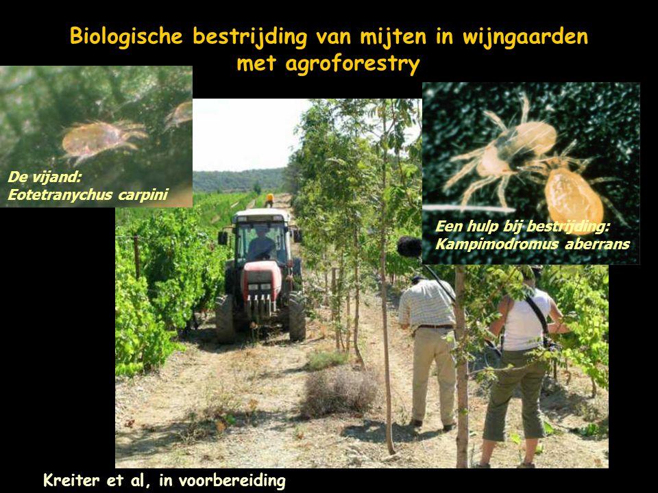 Biologische bestrijding van mijten in wijngaarden met agroforestry
