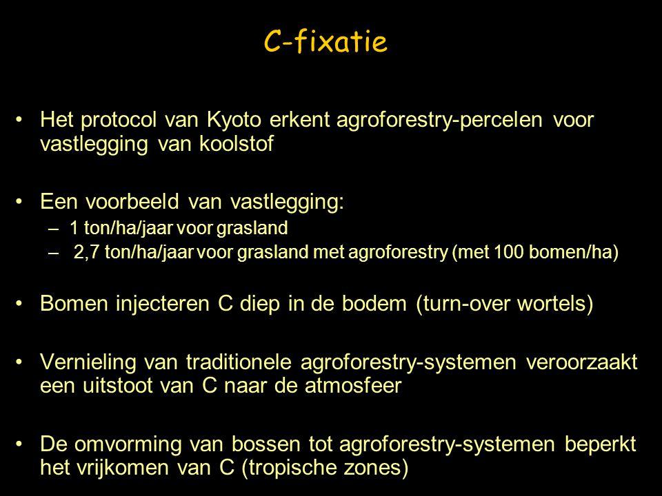 C-fixatie Het protocol van Kyoto erkent agroforestry-percelen voor vastlegging van koolstof. Een voorbeeld van vastlegging: