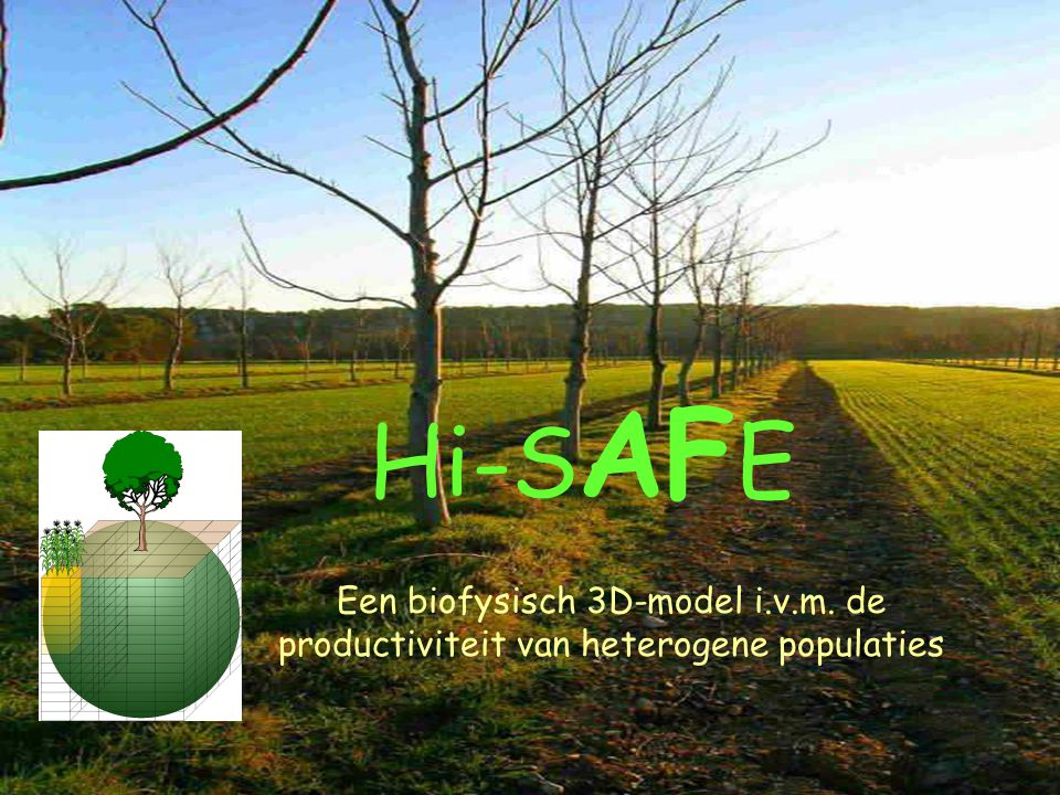 Hi-SAFE Een biofysisch 3D-model i.v.m. de productiviteit van heterogene populaties