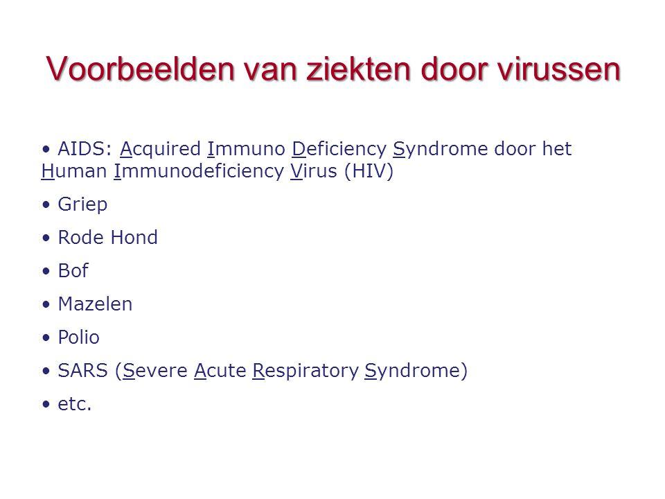 Voorbeelden van ziekten door virussen