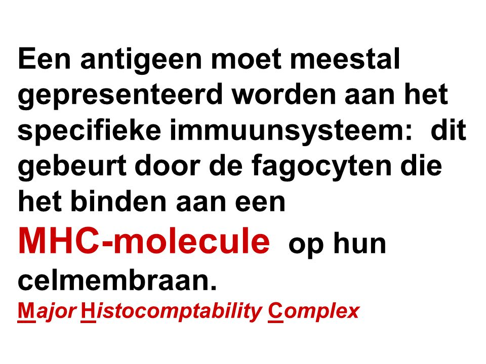 Een antigeen moet meestal gepresenteerd worden aan het specifieke immuunsysteem: dit gebeurt door de fagocyten die het binden aan een MHC-molecule op hun celmembraan.