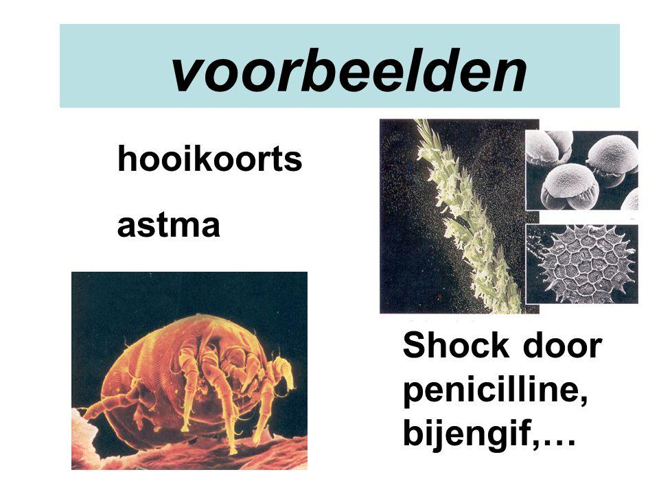 voorbeelden hooikoorts astma Shock door penicilline, bijengif,…