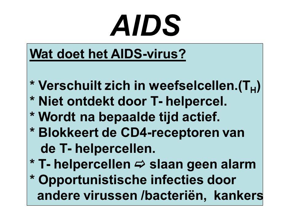 AIDS Wat doet het AIDS-virus * Verschuilt zich in weefselcellen.(TH)