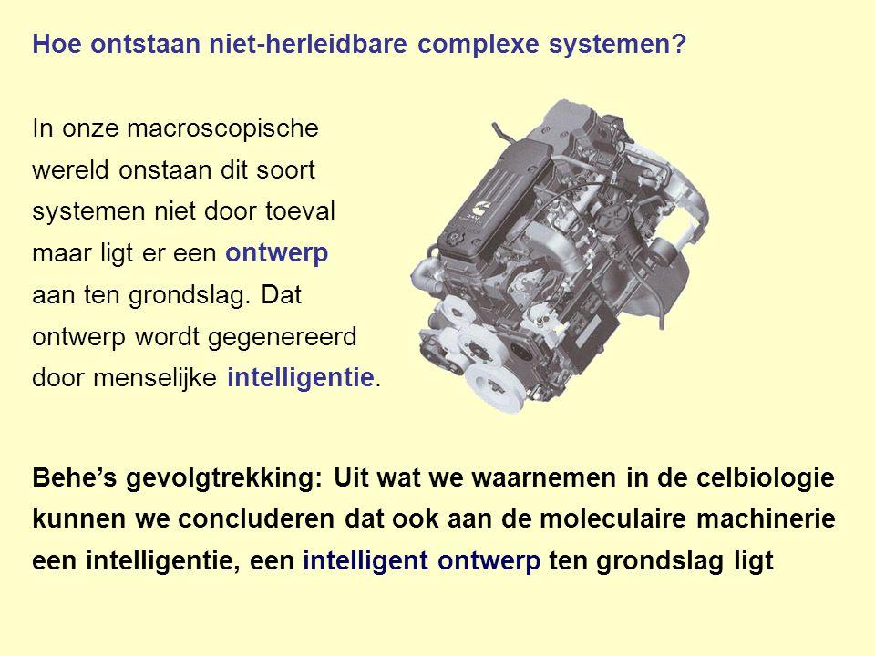 Hoe ontstaan niet-herleidbare complexe systemen