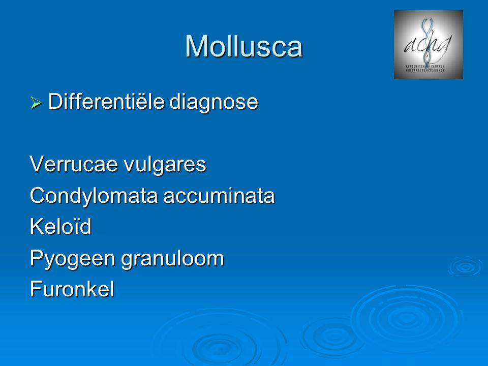 Mollusca Differentiële diagnose Verrucae vulgares