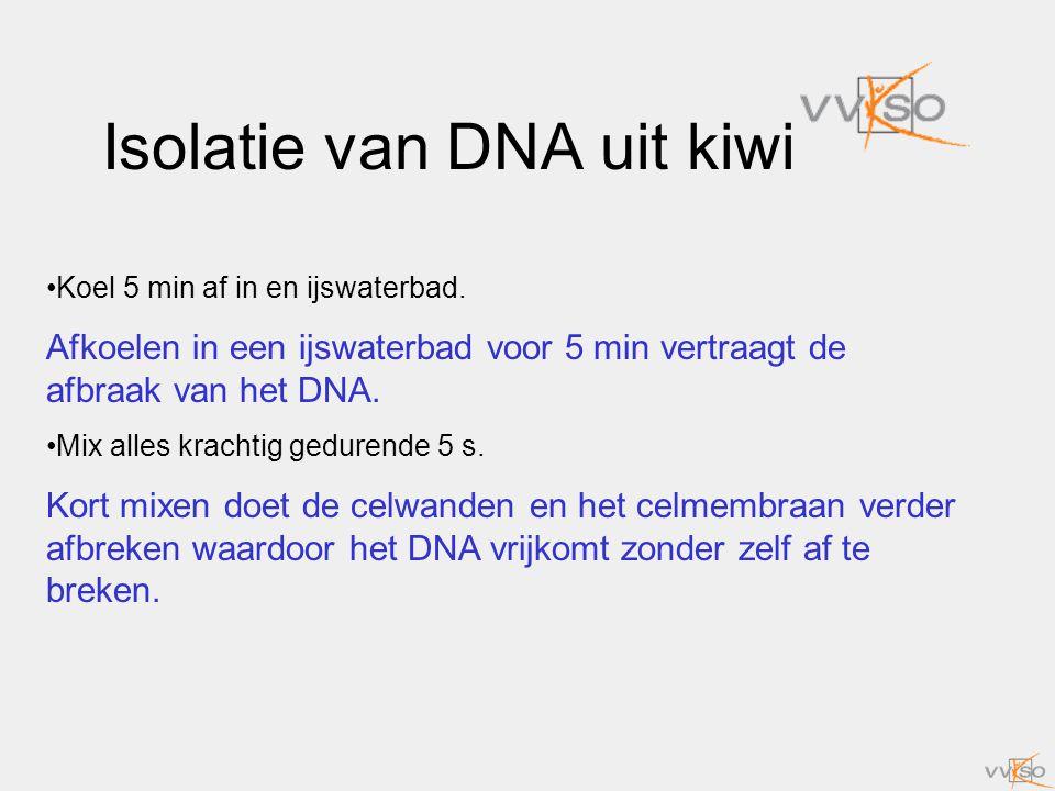 Isolatie van DNA uit kiwi