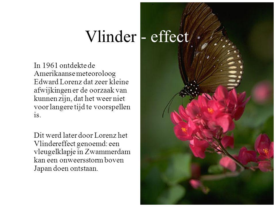 Vlinder - effect