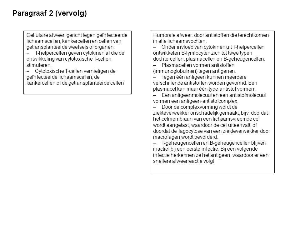 Paragraaf 2 (vervolg)