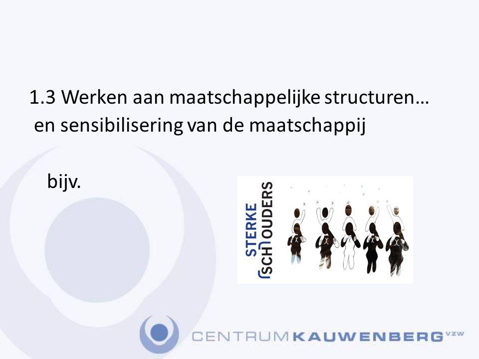 1.3 Werken aan maatschappelijke structuren…