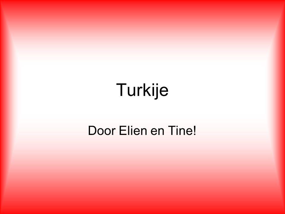 Turkije Door Elien en Tine! Wij doen onze diavoorstelling over Turkije