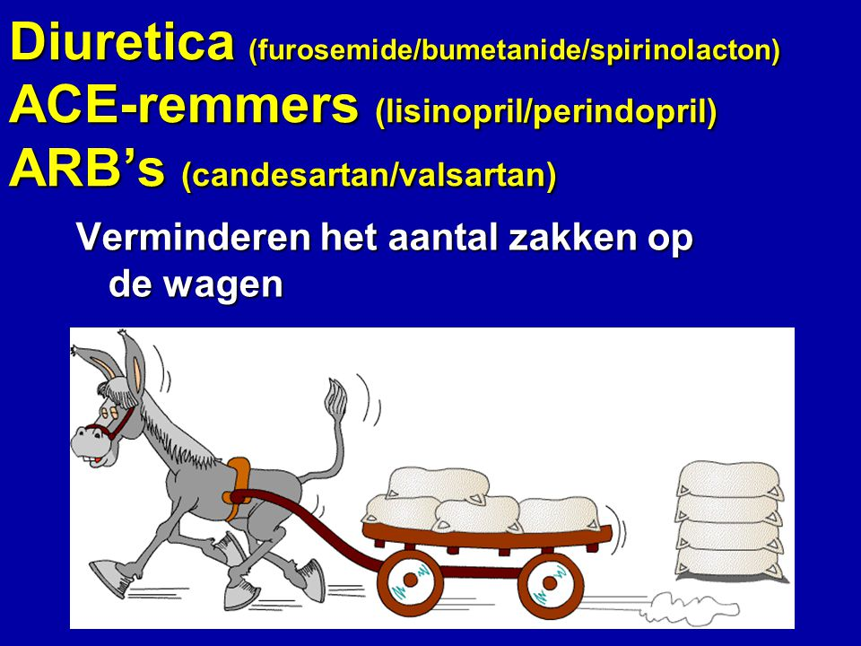 Diuretica (furosemide/bumetanide/spirinolacton) ACE-remmers (lisinopril/perindopril) ARB's (candesartan/valsartan)