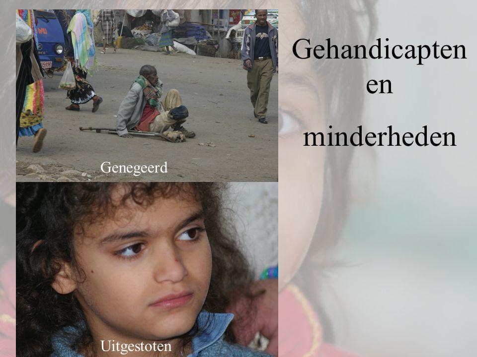 Gehandicapten en minderheden Genegeerd Uitgestoten