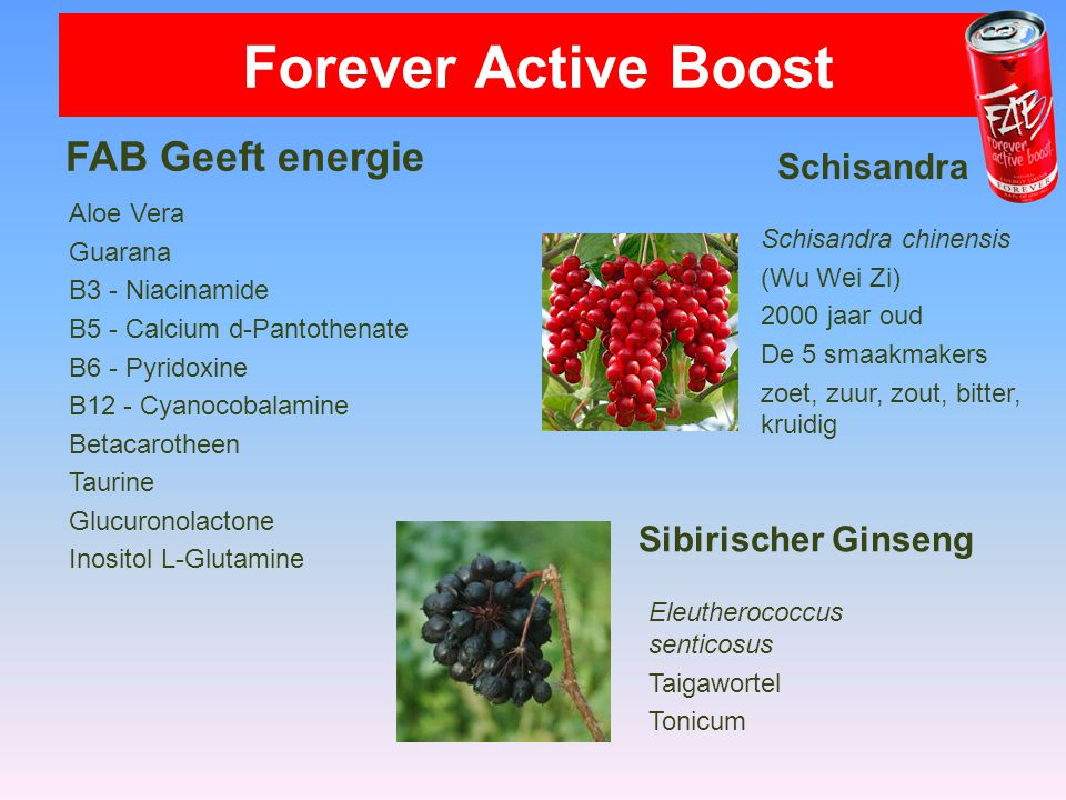 Forever Active Boost FAB Geeft energie Schisandra Sibirischer Ginseng