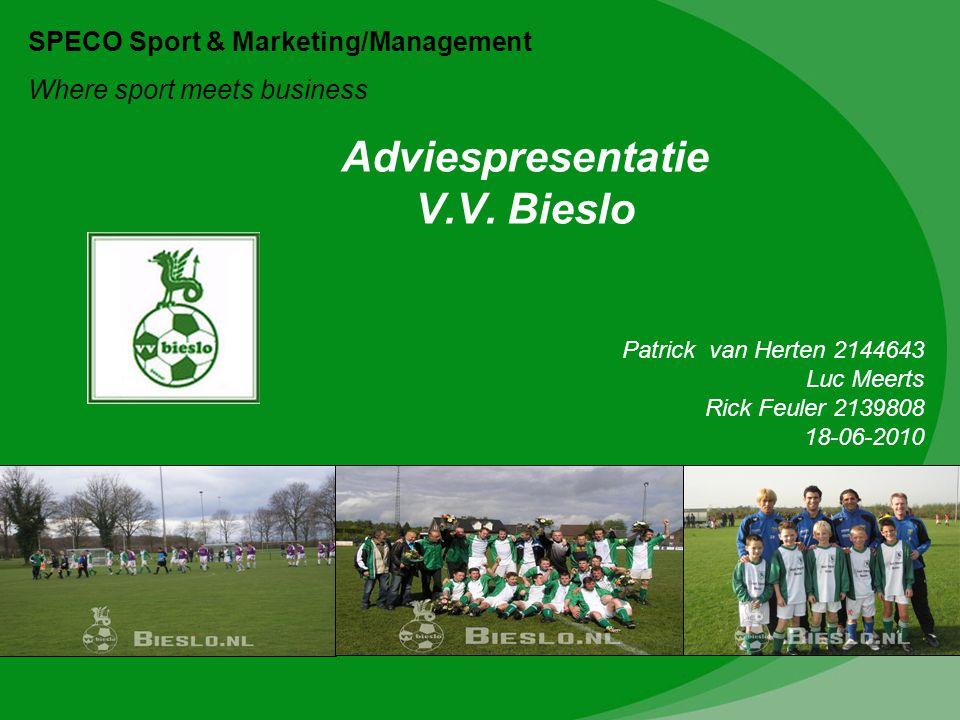 Adviespresentatie V.V. Bieslo
