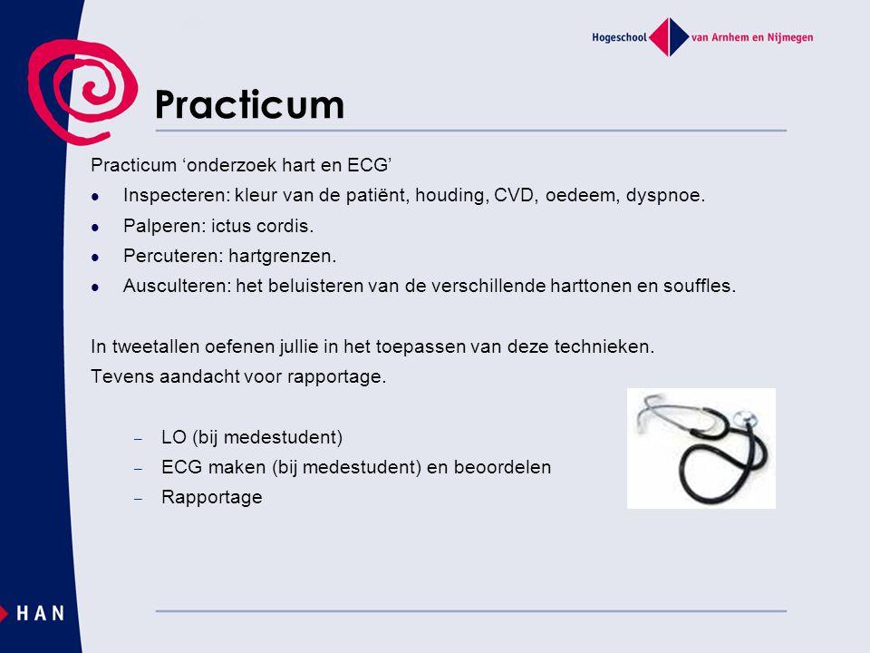 Practicum Practicum 'onderzoek hart en ECG'