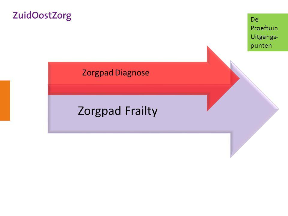 De Proeftuin Uitgangs-punten Zorgpad Diagnose Zorgpad Frailty