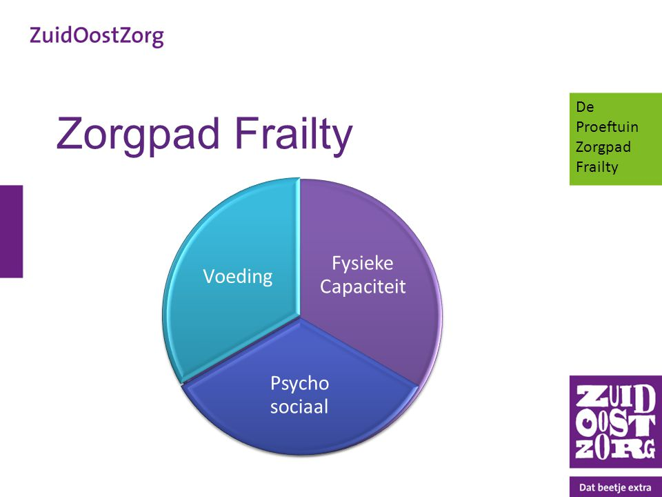 Zorgpad Frailty Fysieke Capaciteit Voeding Psycho sociaal De Proeftuin