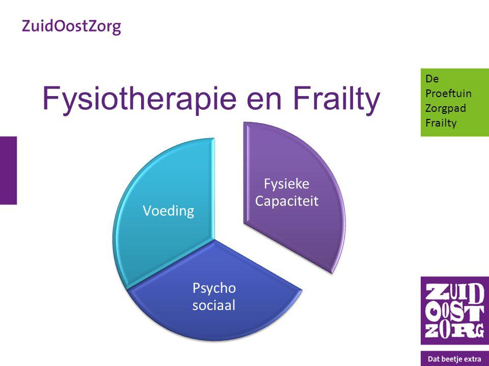Fysiotherapie en Frailty