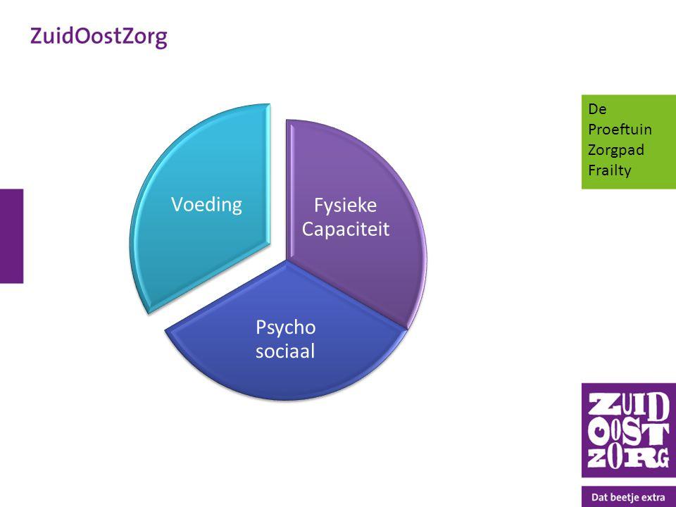 De Proeftuin Zorgpad Frailty Fysieke Capaciteit Psycho sociaal Voeding