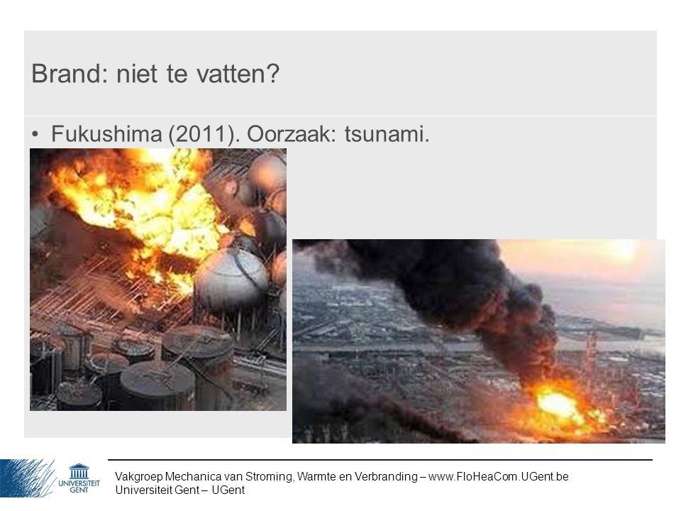 Brand: niet te vatten Fukushima (2011). Oorzaak: tsunami.