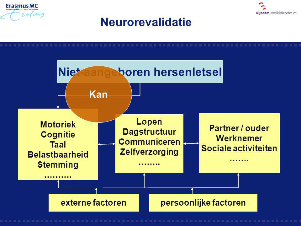Niet-aangeboren hersenletsel persoonlijke factoren