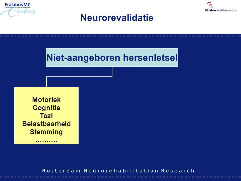 Niet-aangeboren hersenletsel