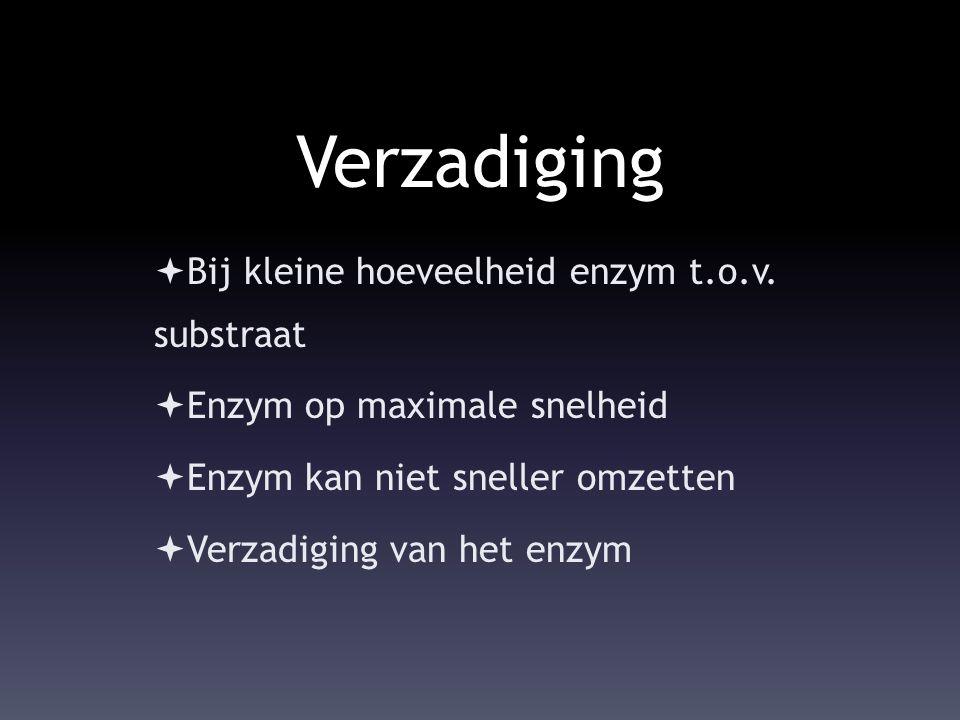 Verzadiging Bij kleine hoeveelheid enzym t.o.v. substraat